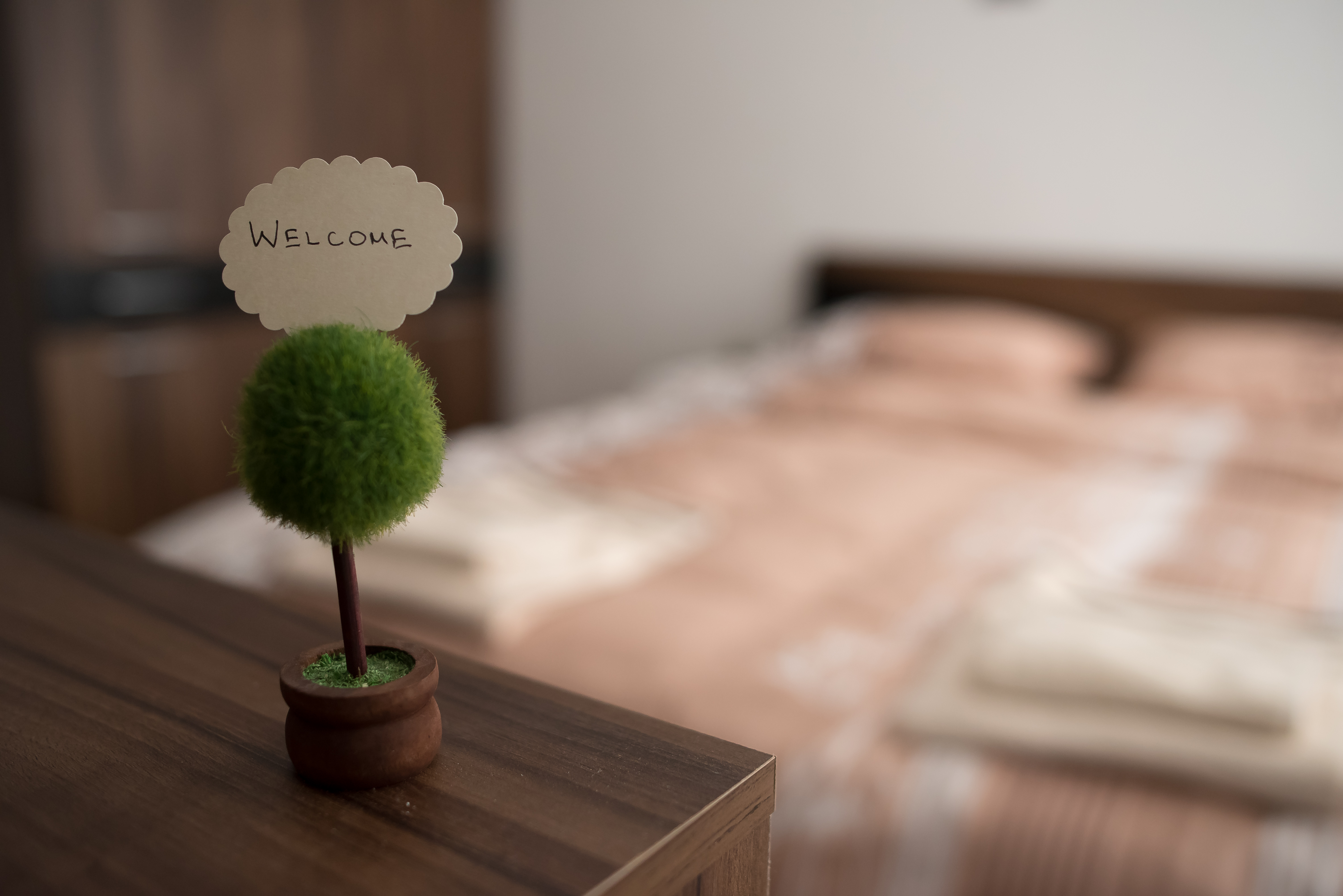 biznes-apartamenti-novotel-plovdiv